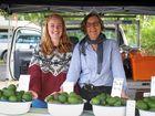 KATE O'Neill profiles Alstonville organic avocado grower and farmers' market regular Kate Thompson.