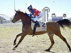 Winner of race 1, Amir Sir Real Kalih ridden by jockey Isabella Tah. Arabian horse racing at Clifton. June 25, 2016