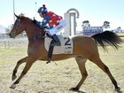 IT WAS a case of showring champion to race-track winner for Amir Sir Real Kalih when he put his name in the racing history books at Clifton Jockey Club today.