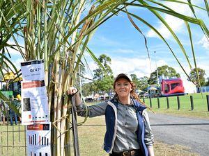 FACES OF BUNDY: Caitlyn cultivates dream career