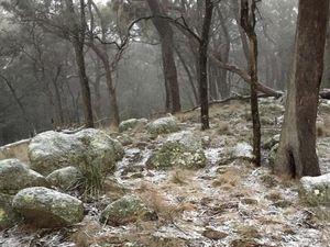 Snow hits the Tenterfield area overnight