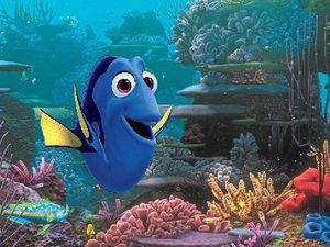 FISHY FUN: Dory (Ellen DeGeneres) in a scene from the movie Finding Dory.