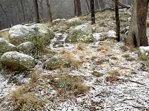 COLD BLAST: Freezing morning for Warwick, Stanthorpe