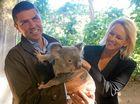 Tweed koalas could be the winners on Saturday