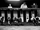 Gulaptis: Greyhound racing ban a 'human tragedy'