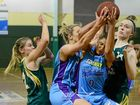It's a partnership focused on keeping Ipswich Force in the hunt for this year's Queensland Basketball League playoffs.