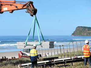 Popular beach closed today during shark barrier construction