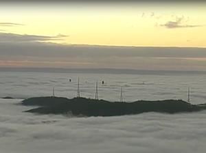 Fog blankets Brisbane