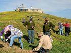 Bird habitat restored on Solitary Islands
