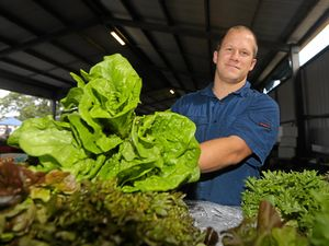 LETTUCE KING: Chad Curtis at the Murwillumbah Farmers Market.