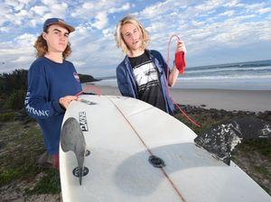 Shark bump was 'very similar to Mick Fanning incident'