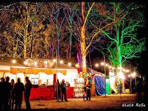 World-class festival calls Cherrabah home