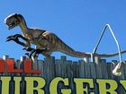 A RAPTOR is on the loose on Brisbane's northside after being illegally released from a veterinary surgery.