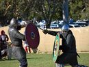 A TASTE of Viking culture is coming to the Northern Rivers next month for the inaugural medieval melee.