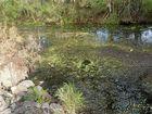 Residents slam Western Drainage Scheme management.