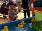 City showcases our best as crowds flock to Ekka.