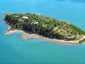 Investors eye Gladstone's $4m island with resort approval