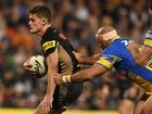 Gould suggests the NRL establish an academy for emerging halfbacks