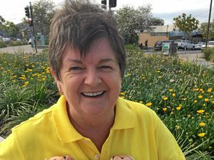 CARE BEARS: Judy Hancock is volunteering today for Daffodil Day.