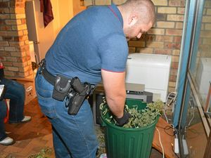 GROW HOUSE GONE: Lockyer Valley Crime Car Constable Samuel Ross weighs bags of cannabis seized in a Falconer St grow house at Gatton.