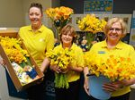FULL OF FLOWERS: Angela Childs, Mary Leahy and Jill Chegwidden are ready for Daffodil Day at the Cancer Council office in Bundaberg.
