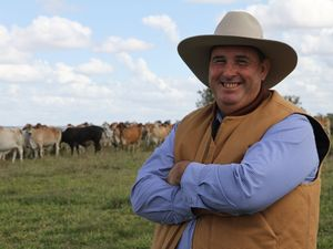Grazier plans to make the most of good prices