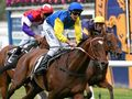 Spring is in the air with Memsie Stakes