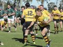 Dalby's John Ritter Oval hosts Downs Rugby Super Saturday finals.