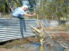 OVER 2000 crocodiles will make their way from the Northern Territory to Rockhampton's Koorana Crocodile Farm next month.
