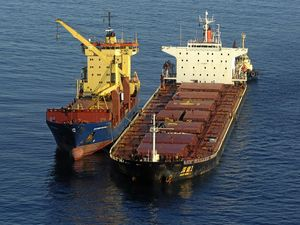 Govt paints grim picture of damage left by grounded ship