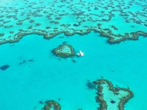Whitsunday weddings: Top five venues to tie the knot
