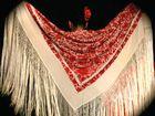 Sunshine Coast flamenco sensation Arte Flamenco will host flamenco dance and cajon workshops in Peregian Beach next month.