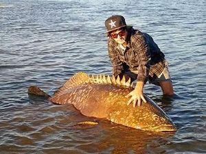 Great groper! Kayak angler hooks onto rare monster