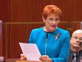 Hanson on One Nation split: 'It's not teamwork'