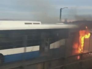 Sydney Harbour bus fire prompts resignation demand