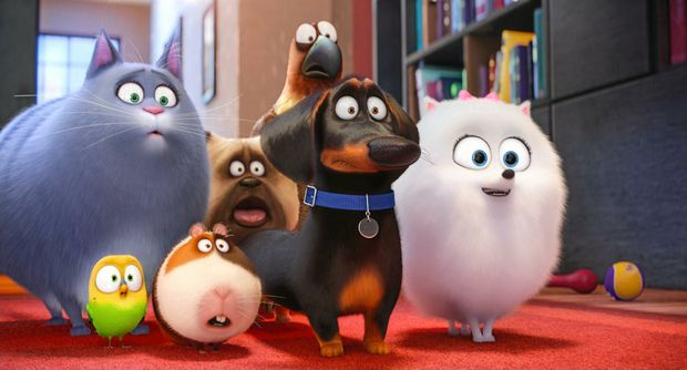 SECRET LIFE: A scene from the movie The Secret Life of Pets.
