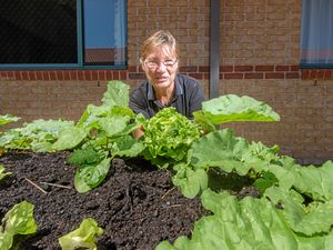 Activities officer at Caroona Yamba Anne Duke looks through their newly installed vegetable gardens.