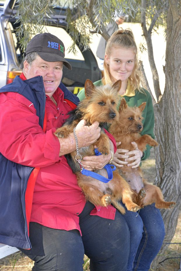 Sharon and Hannah Briggs with Bluey and Plumps at a Warwick Lure Coursing Club field trial.