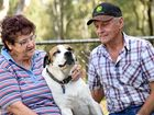 AFTER Gloria and Ivan Trusz's dog passed away, the Gatton couple never thought they'd own another dog.