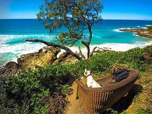Coastline to mountain top: Sunshine Coast in stunning photos