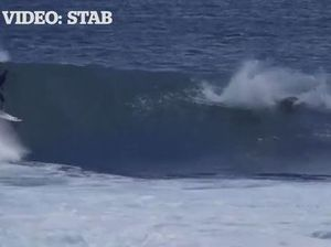 WATCH: Shocking moment a dolphin tackles a young surfer
