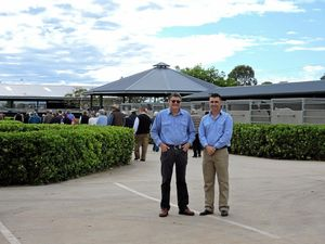 Darling Downs Vets show off equine site on tour