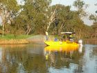 Rockhampton regional councillor Neil Fisher said the hyacinth was in no way posing a risk to water quality.