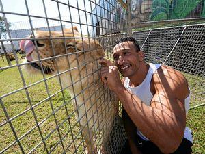 QT readers divided over animal circus debate