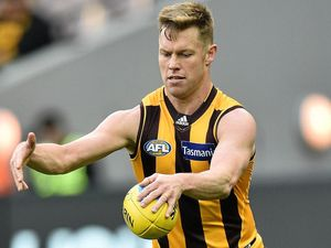 Sam Mitchell of the Hawks has backed Chris Fagan to be the new Lions coach.