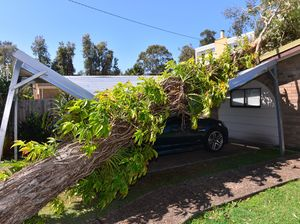 Storm causes damage in Coolum