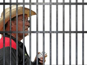 Just imagine Kermie behind bars.