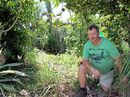 A small block in South Mackay is at the centre of a dispute between the council, a state department and an avid gardener.