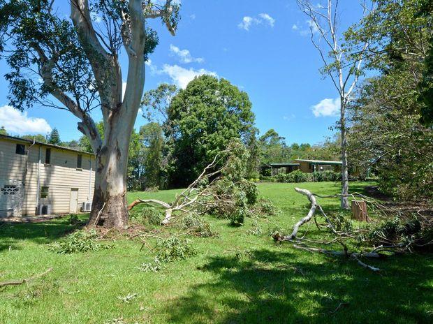 Storm damage in Maleny.   Photo: John McCutcheon / Sunshine Coast Daily