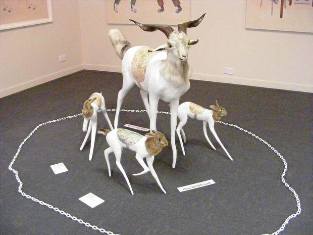 ANIMAL ART: The Animal Fanfair exhibition is now at Lapunyah Art Gallery.